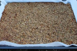 granola bar pics 012
